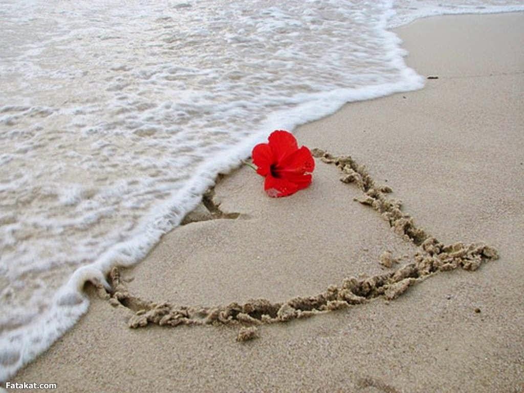 بالصور اجمل ماقيل عن الحب الحقيقي , بالصور كلمات راقيه عن الحب الحقيقى 5722 9