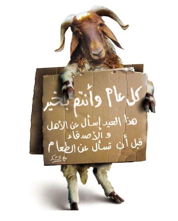 بالصور صور عن عيد الاضحى , اجمل الصور لعيد الاضحى المبارك 5853 6