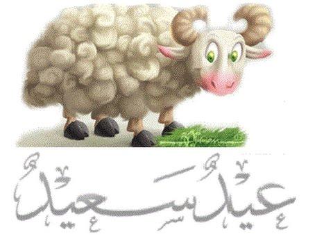 بالصور صور عن عيد الاضحى , اجمل الصور لعيد الاضحى المبارك 5853 7