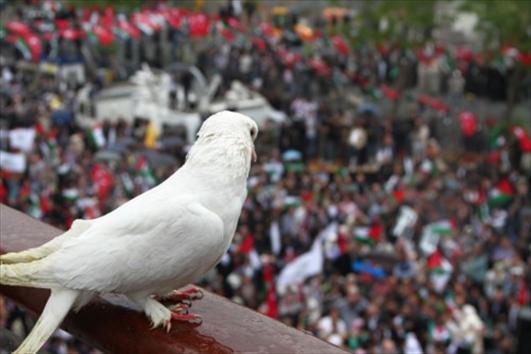بالصور صور عن السلام , اجمل صور عن السلام 5857 8