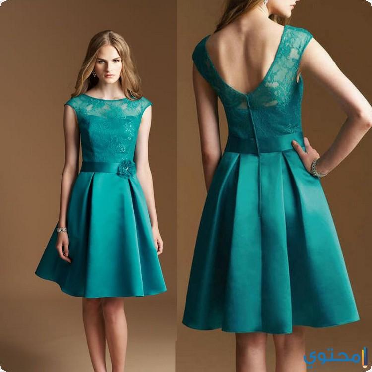 بالصور اخر موديلات الفساتين , بالصور اخر موديلات فساتين روعه 5866 9