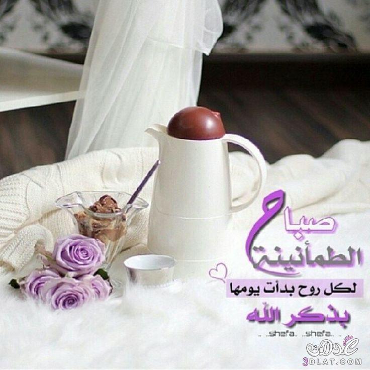 بالصور اجمل صور صباحيه , احلى الصور الصباحيه 5922 11