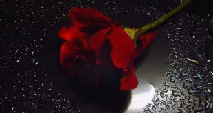 صور رومانسيه حزينه , اجمل صور رومانسية حزينه
