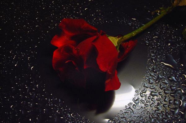 بالصور صور رومانسيه حزينه , اجمل صور رومانسية حزينه 5564