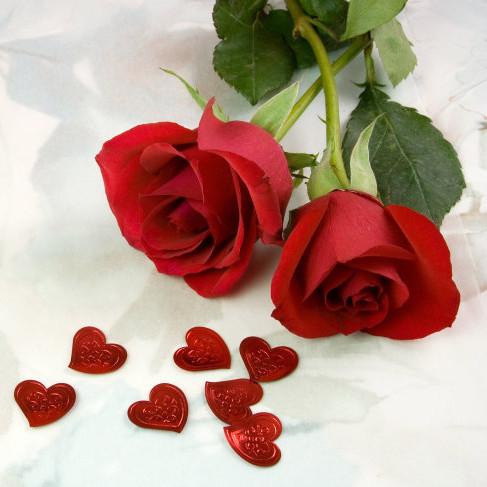 بالصور ورد طبيعي , جمال الورود الطبيعية 6057 11