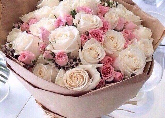 بالصور صور اجمل الورود , بالصور اجمل الورود الطبيعيه 6057 12