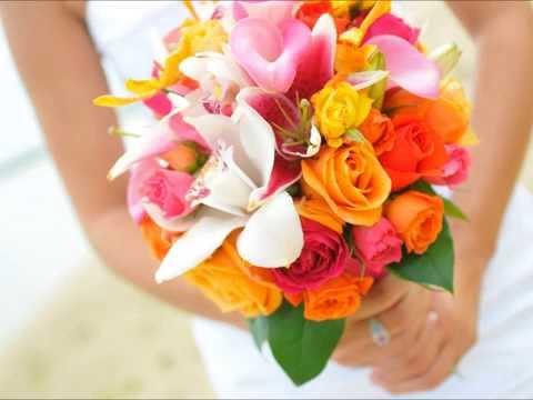 بالصور صور اجمل الورود , بالصور اجمل الورود الطبيعيه 6057 15