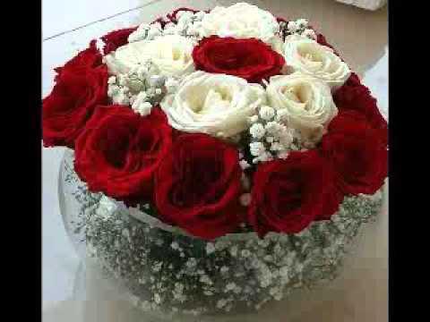 بالصور صور اجمل الورود , بالصور اجمل الورود الطبيعيه 6057 3