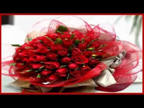 بالصور صور اجمل الورود , بالصور اجمل الورود الطبيعيه 6057 4