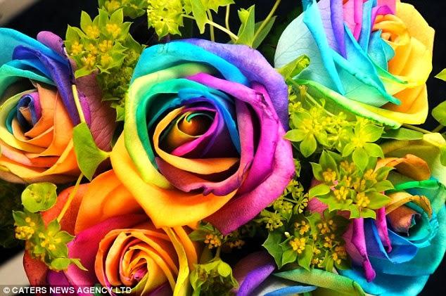 بالصور ورد طبيعي , جمال الورود الطبيعية 6057 7