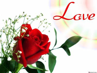 صور ورود الحب , صور ورود حب
