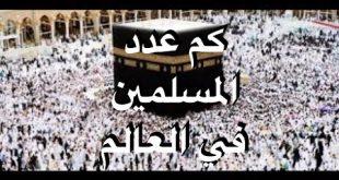 صور كم عدد المسلمين في العالم , ما هو عدد المسلمين