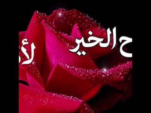 صورة صور ورد متحركه , اجمل الورود الجميلة الرقيقة 119 2