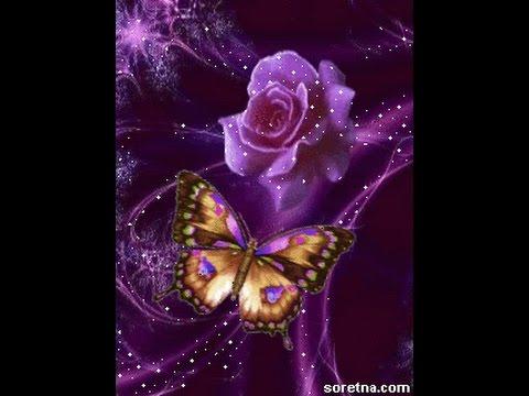 صورة صور ورد متحركه , اجمل الورود الجميلة الرقيقة 119 4