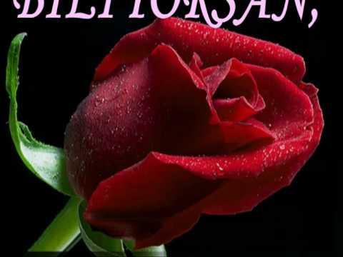 صورة صور ورد متحركه , اجمل الورود الجميلة الرقيقة 119 6