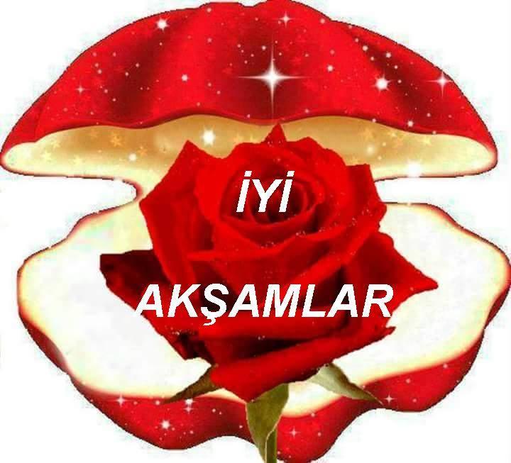 بالصور مساء الخير بالتركي , كيف تقول مساء الخير باللغة التركية؟ 1263 10