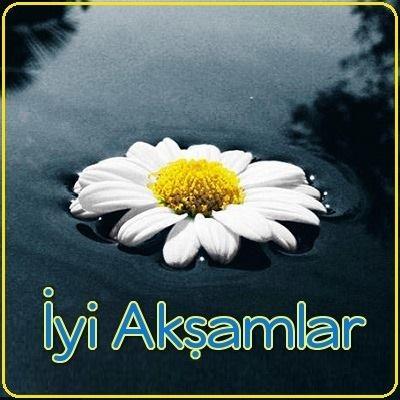 بالصور مساء الخير بالتركي , كيف تقول مساء الخير باللغة التركية؟ 1263 7