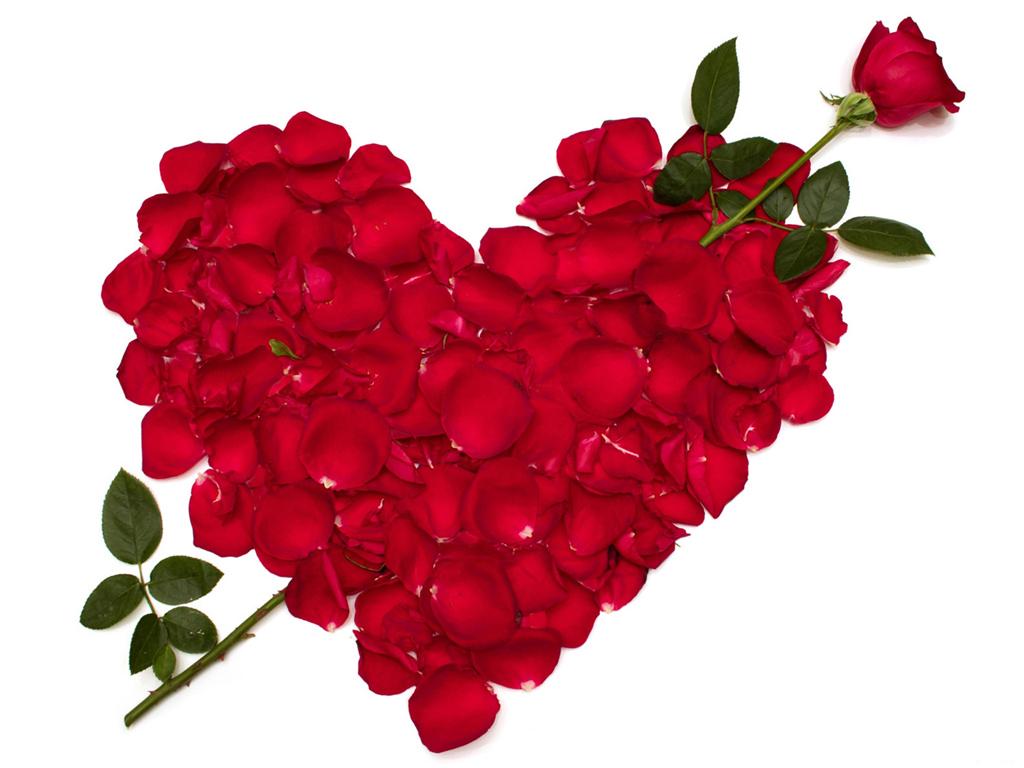 بالصور صور رومانسيه وحب , احلى واجمل صور معبرة عن الحب والعشق 1472 9