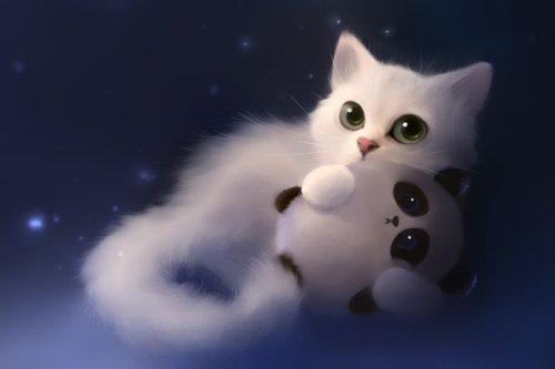 خلفيات قطط كرتون
