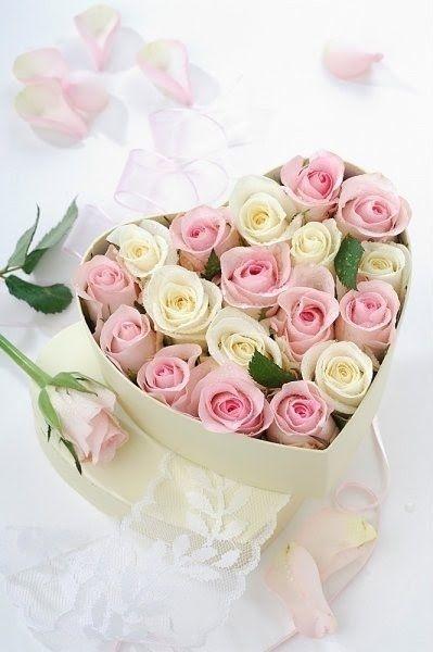 بالصور ورود جميلة , اروع الصور للورد والزهور 1619 10