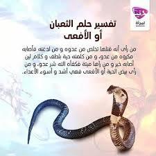 بالصور رؤية الثعبان في المنام , ماتفسير رؤية الثعبان فى الحلم 1713 2