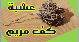 صورة عشبة كف مريم , فوائد استخدام عشبة كف مريم