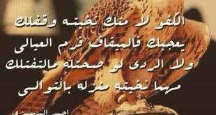 قصائد مدح قويه , اجمل قصائد مدح