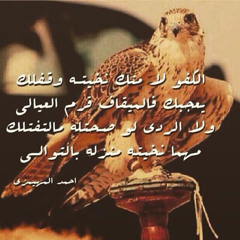 بالصور قصائد مدح قويه , اجمل قصائد مدح 2057