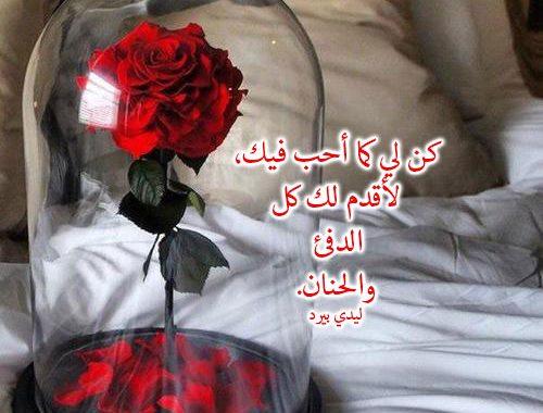 بالصور كلمات عن الورد , اجمل عبارات عن الورد 2145 4