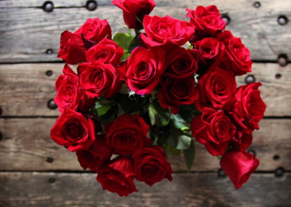بالصور كلمات عن الورد , اجمل عبارات عن الورد 2145 6