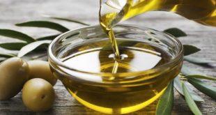 بالصور فوائد زيت الزيتون , 5 وصفات مذهلة لزيت الزيتون للشعر 2755 3 310x165