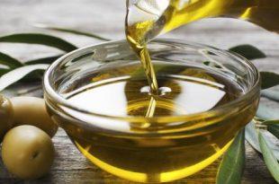 صور فوائد زيت الزيتون , 5 وصفات مذهلة لزيت الزيتون للشعر