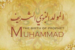 صورة صور المولد النبوي الشريف , اجمل مظاهر الاحتفال بالمولد النبوي