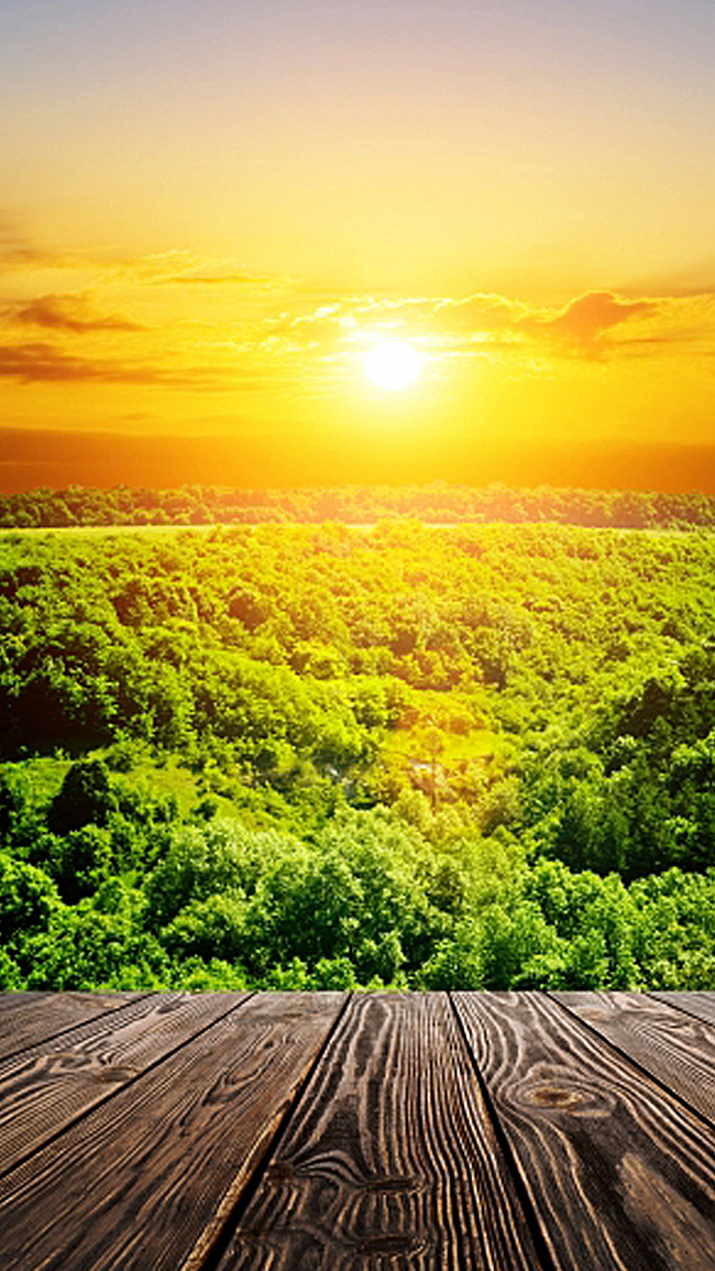 بالصور منظر جميل , اروع المناظر الطبيعية الخلابة 2812 5
