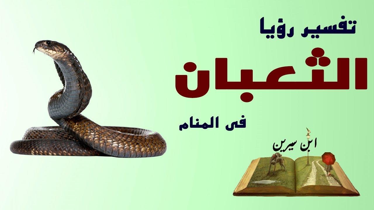 صورة الثعابين في المنام , تفسير روية الافاعى لابن سيرين 2823 2