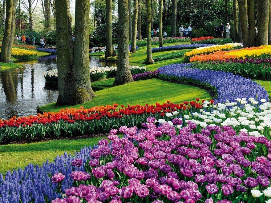 بالصور صور فصل الربيع , اروع صور لفصل الربيع وجماله 2841 1