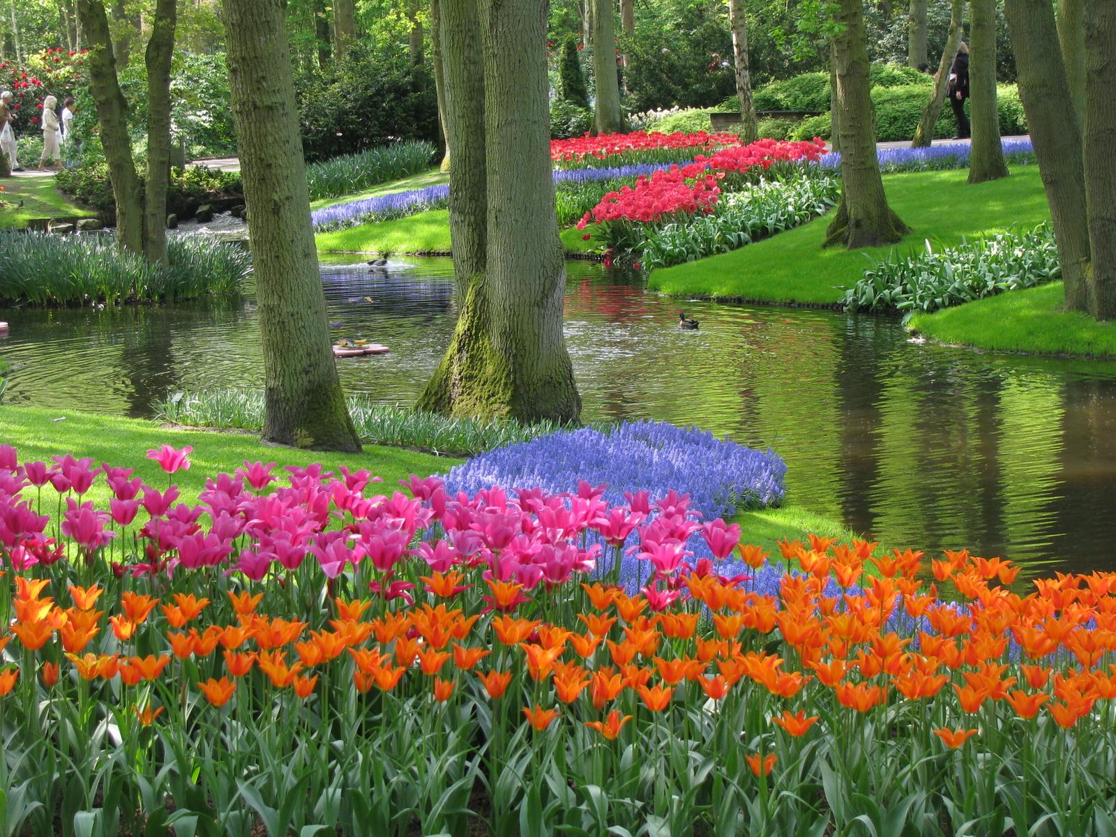 بالصور صور فصل الربيع , اروع صور لفصل الربيع وجماله 2841 3