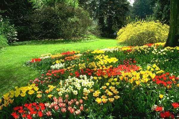 بالصور صور فصل الربيع , اروع صور لفصل الربيع وجماله 2841 4