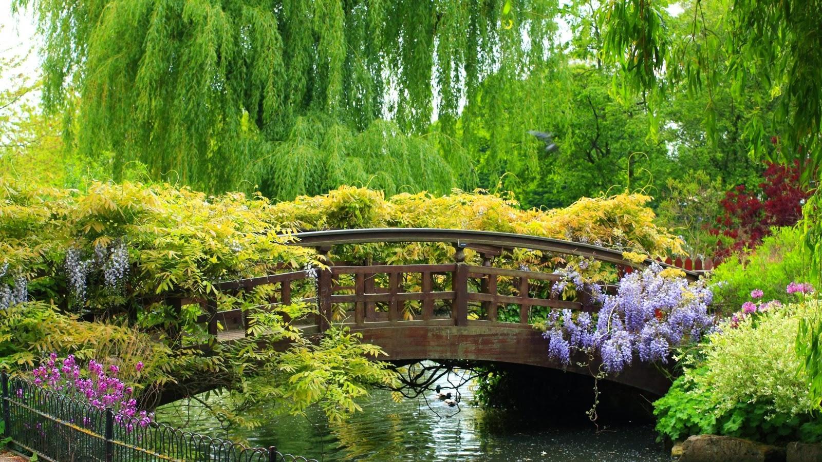 بالصور صور فصل الربيع , اروع صور لفصل الربيع وجماله 2841 5
