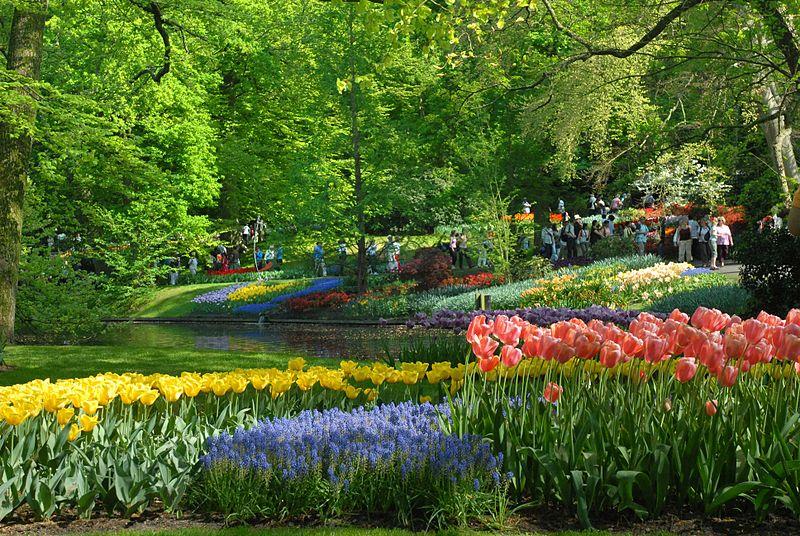 بالصور صور فصل الربيع , اروع صور لفصل الربيع وجماله 2841 6