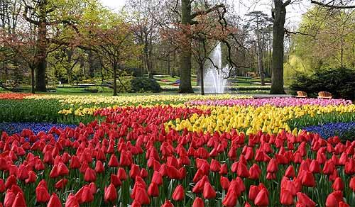 بالصور صور فصل الربيع , اروع صور لفصل الربيع وجماله 2841 7