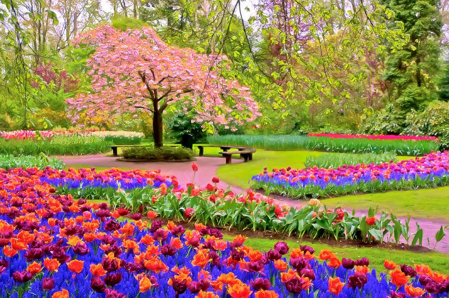 بالصور صور فصل الربيع , اروع صور لفصل الربيع وجماله 2841 9