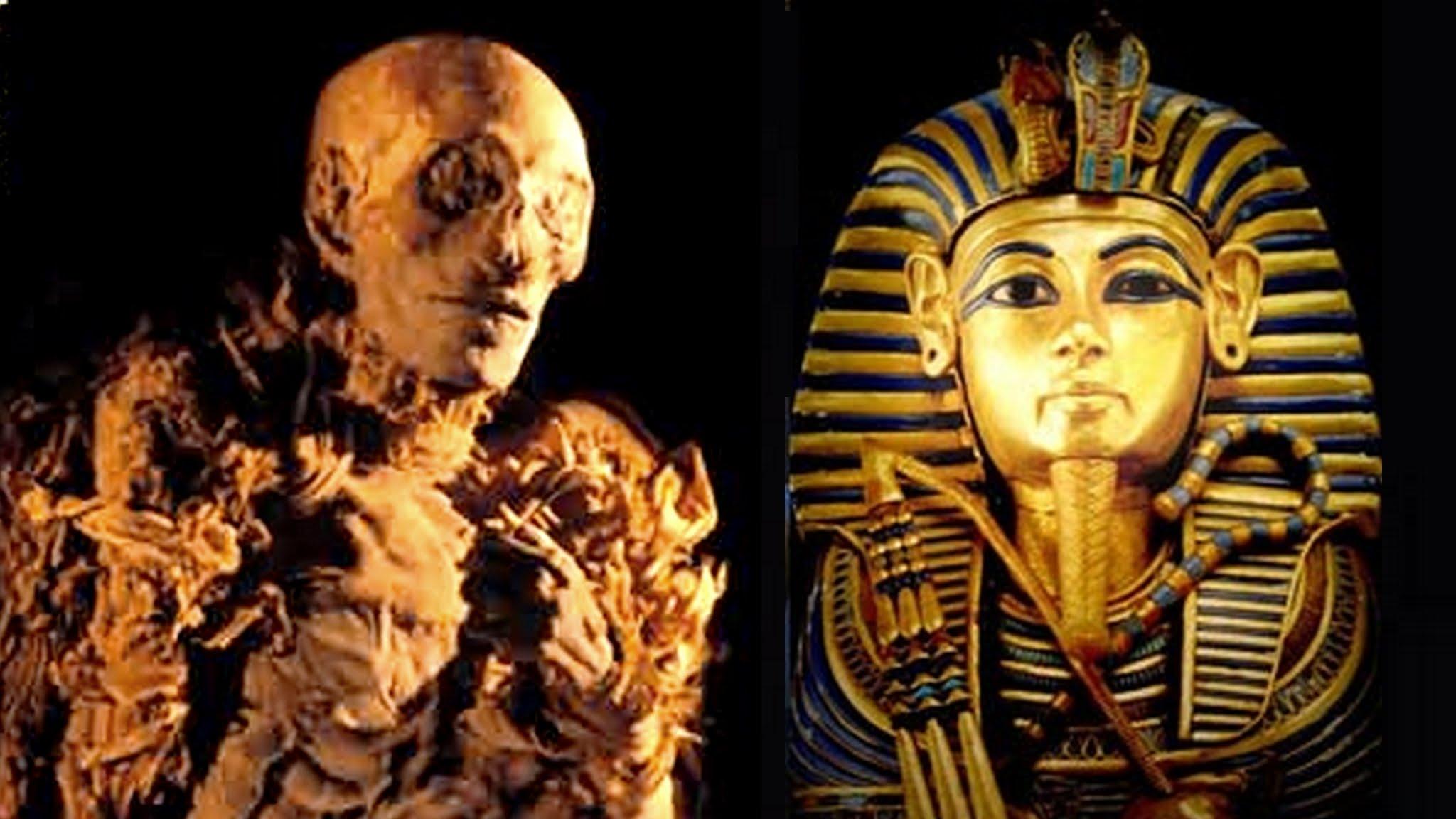 بالصور ما معنى فرعون , تعرف على معنى فرعون 3293