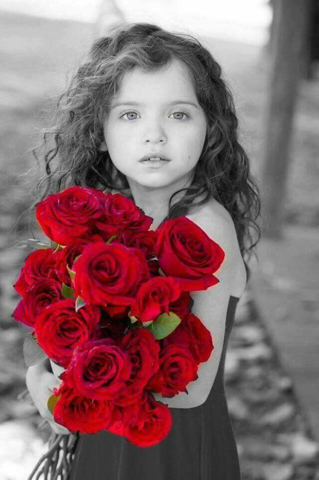 بالصور صور زهور , الصور الجميله للزهور العطره 3574 6
