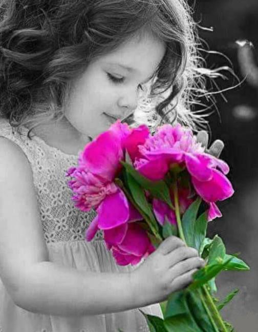 بالصور صور زهور , الصور الجميله للزهور العطره 3574 8