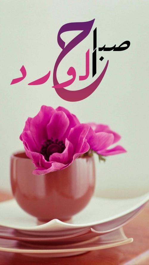 بالصور خلفيات صباحيه , صور و رمزيات صباحيه 3937 2