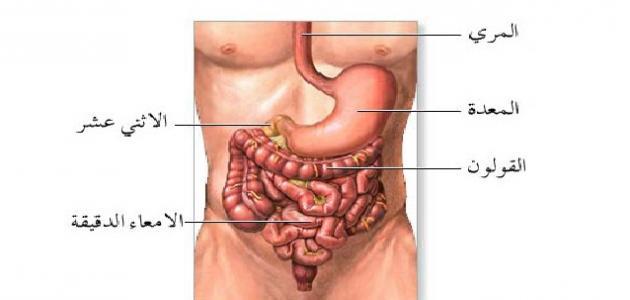 صورة اعراض القولون العصبي , تعرف على اعراض و اسباب مرض القولون