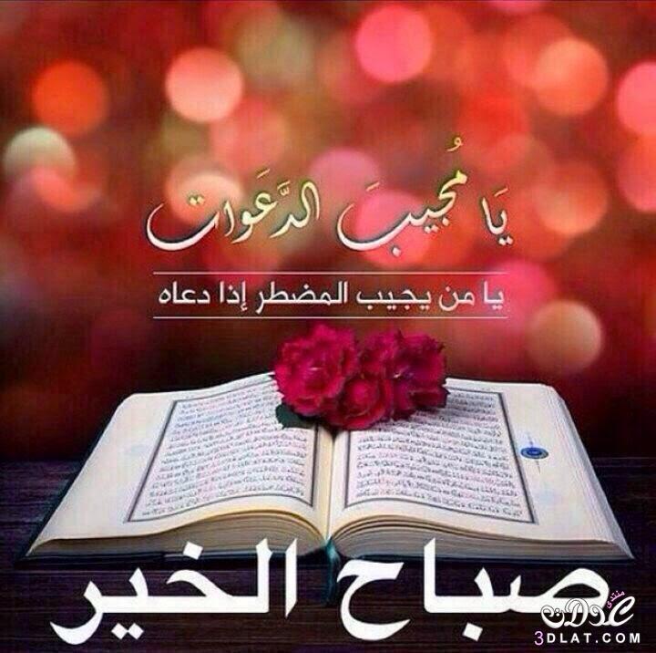 بالصور صور صباح ومساء الخير , صور مميزة صباح ومساء الخير 4259 12