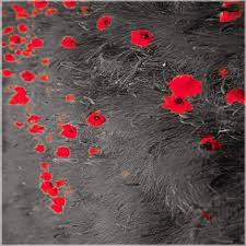 بالصور خلفيات جميلة للواتس اب , اجمد صور خلفيات للواتس اب 4264 11
