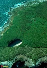 بالصور عجائب البحر , اجمل صور لعجائب البحر 4689 12